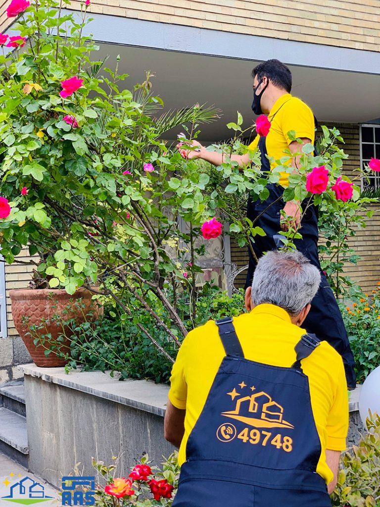 خدمات و امور باغبانی (03)