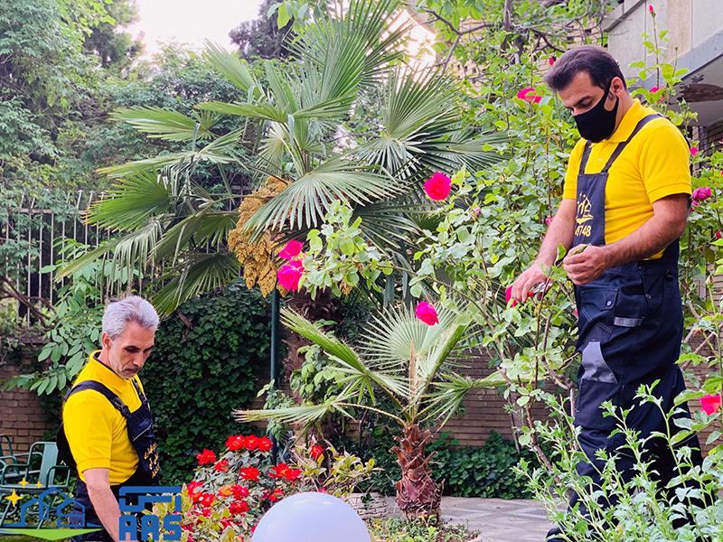 خدمات و امور باغبانی (07)
